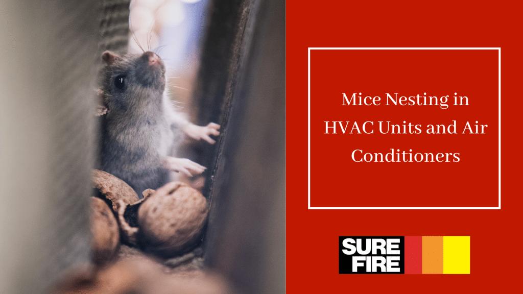 mice nesting in hvac units